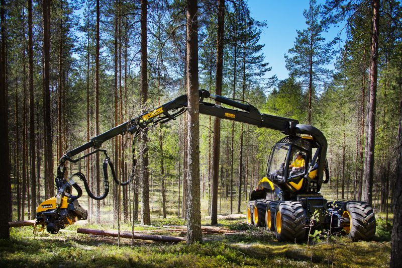 Believe It Or Not Ten Amazing Facts About Mechanized Timber