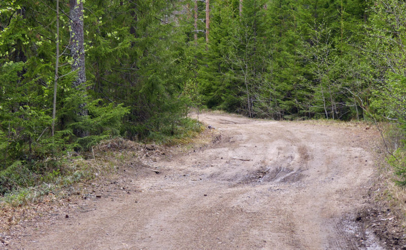There are about 365,000 kilometres of private roads in Finland, and of those, 125,000 kilometres are forestry roads. Photo: Päivi Mäki