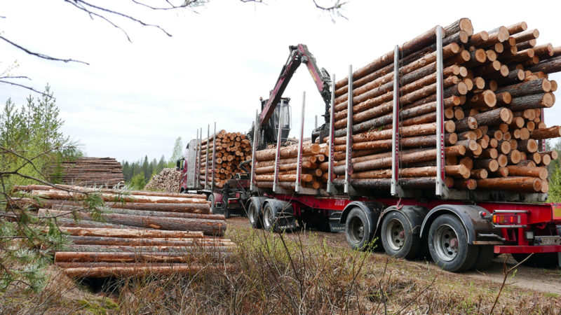 An improvement of the road network is also urgently needed because the vehicles carrying timber and wood chips have become significantly larger. Photo: Päivi Mäki