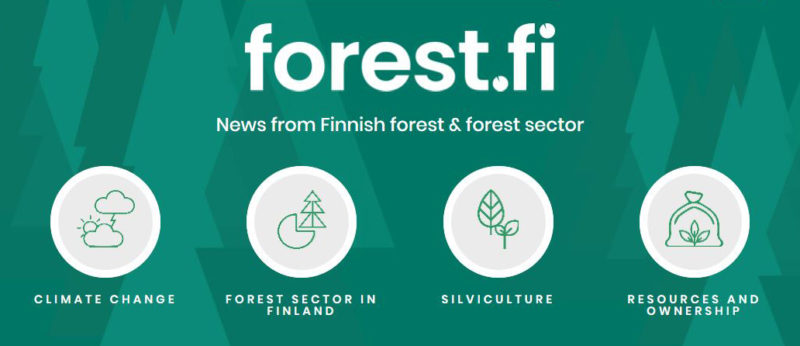 forest fi online magazine has had a makeover – Finnish