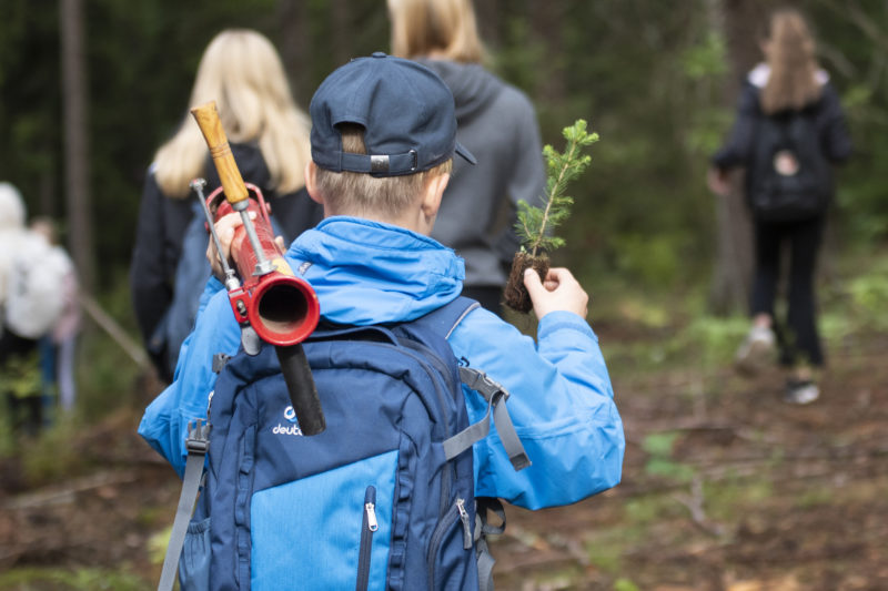 One task during the Schools Forest Week is to plant a tree. Photo: Vilma Issakainen